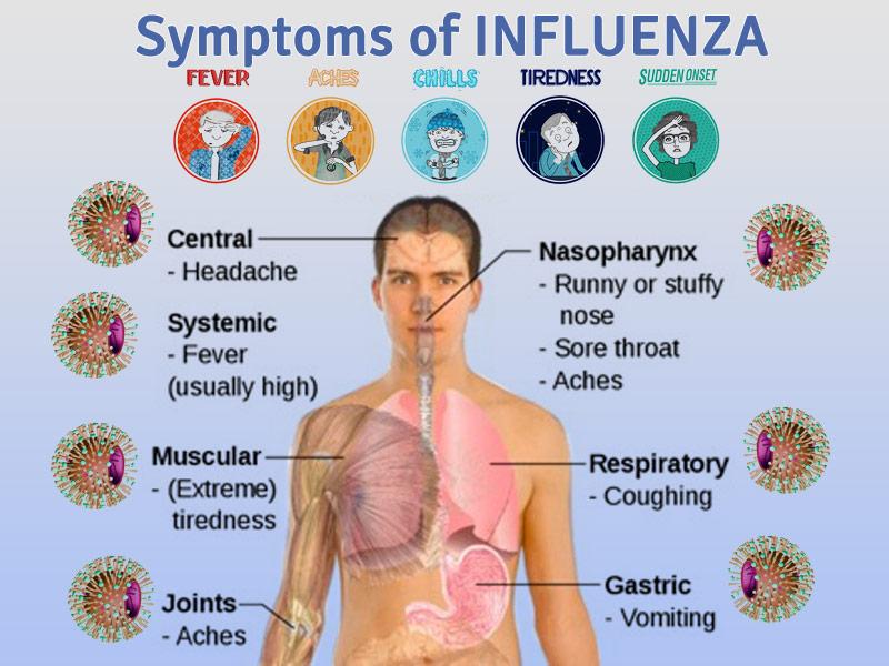 Influenza Symptoms 2013 Rapid Flu Diagnostic Testing  amp