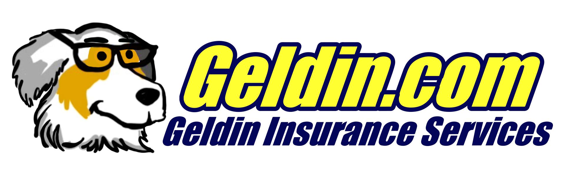 Geldin Logo Head Left